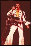 Learn the truth about Elvis here!